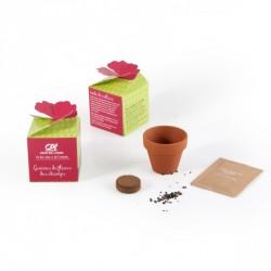 Petit boîte personnalisée avec kit de culture