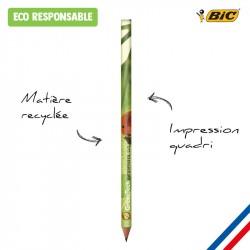 Crayon papier BIC impression photo