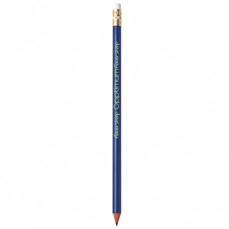 BIC® Evolution Classic Ecolutions® crayon