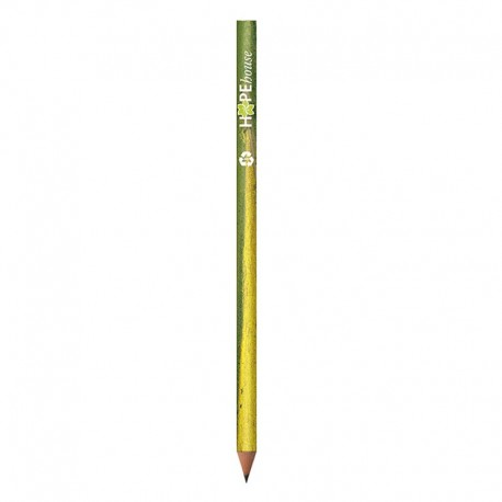 BIC Evolution Digital Cut Ecolutions crayon
